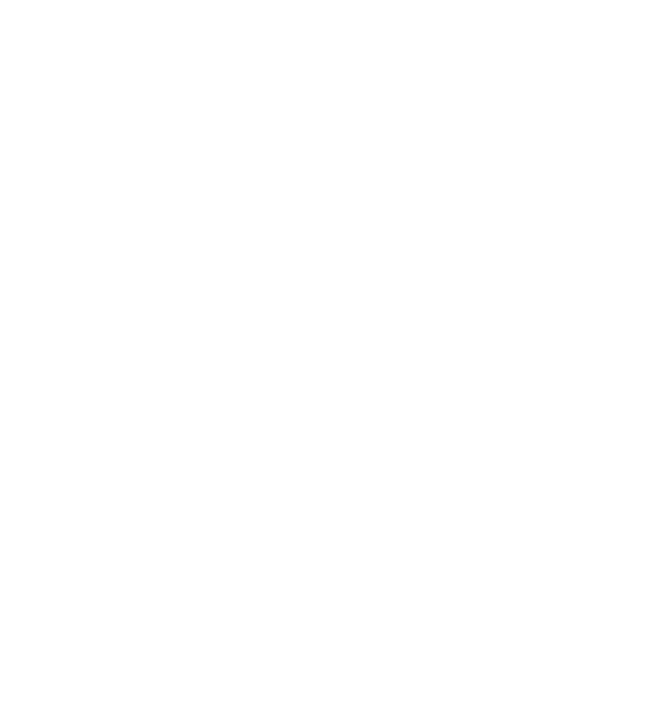Michigan Wedding and Family Photographer, Natalie Briana Logo